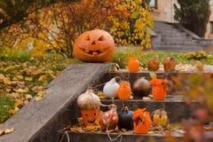 Abóboras e outros artigos da decoração para Dia das Bruxas Fotografia de Stock