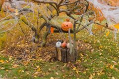 Abóboras e outros artigos da decoração para Dia das Bruxas Foto de Stock
