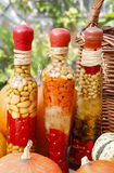 Abóboras e vegetais conservados coloridos em preservar o vidro Imagens de Stock Royalty Free