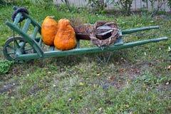 Abóboras em um carrinho de mão de madeira Foto de Stock