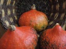 Abóboras em uma cesta de vime Imagem de Stock Royalty Free
