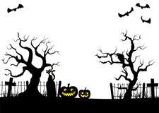Abóboras em uma noite da Lua cheia no cemitério Foto de Stock