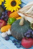 Abóboras, girassóis e vegetais e frutos maduros diferentes foto de stock royalty free