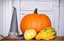 Abóboras, gourds e um chapéu das bruxas Foto de Stock Royalty Free