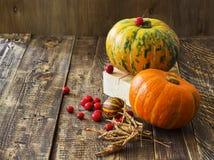 Abóboras, melão e bagas vermelhas Imagem de Stock Royalty Free