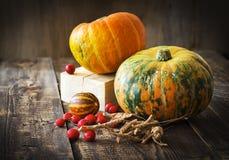 Abóboras, melão e bagas vermelhas Imagens de Stock Royalty Free