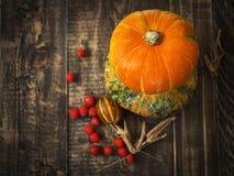 Abóboras, melão e bagas vermelhas Foto de Stock