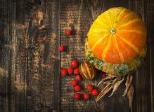 Abóboras, melão e bagas vermelhas Fotografia de Stock