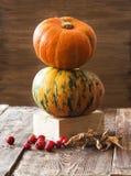 Abóboras, melão e bagas vermelhas Foto de Stock Royalty Free