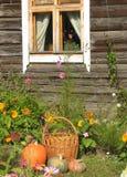 Abóboras na casa Imagem de Stock Royalty Free