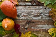 Abóboras orgânicas do Hokkaido na decoração rústica do outono com cópia Fotos de Stock Royalty Free