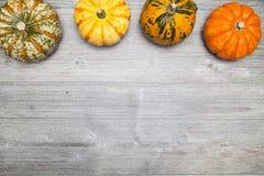 Abóboras para Halloween fotos de stock