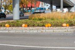 Abóboras para o Dia das Bruxas em estradas transversaas em Gdansk perto de Galeria Baltycka Fotografia de Stock Royalty Free