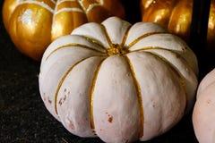 Abóboras pintadas bonitas do branco e da cor do ouro no Dia das Bruxas Imagem de Stock Royalty Free