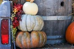 Abóboras, uvas e tambor de vinho Fotografia de Stock Royalty Free
