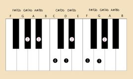 Ab major scale fingering for piano to use with every application. Scale and fingering of Ab major scale on piano for education or every application Vector Illustration
