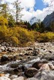 Aba κομητεία Bipenggou λι Στοκ φωτογραφία με δικαίωμα ελεύθερης χρήσης