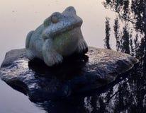 Żaba na kamieniu Zdjęcia Stock