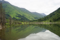 Aba-prefektur i det sichuan landskapet, berg för fyra flickor Royaltyfria Foton