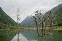 Aba-prefektur i det sichuan landskapet, berg för fyra flickor Royaltyfria Bilder