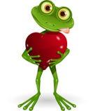 Żaba z sercem Obrazy Royalty Free