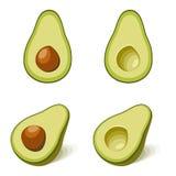 Abacate com e sem a semente no estilo liso imagens de stock royalty free