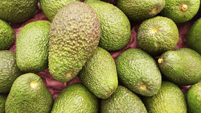 Abacate de Aguacate natural Imagem de Stock