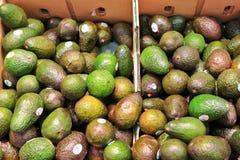 Abacates fotos de stock