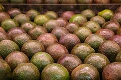 Abacates Imagens de Stock