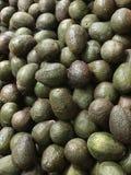 Abacates verdes maduros na exposição em um escaninho do produto do mercado imagens de stock