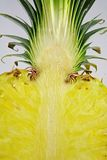 Abacaxi cortado imagem de stock royalty free
