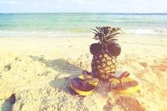 Abacaxi do moderno na praia - forma no verão imagens de stock