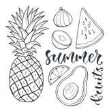 Abacaxi do vetor e frutos cortados Ilustração do alimento para o projeto, a etiqueta e os cartazes da cópia Foto de Stock