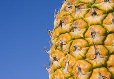 Abacaxi e céu azul fotografia de stock