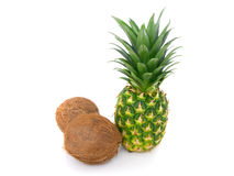 Abacaxi e coco maduros Foto de Stock Royalty Free