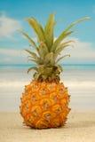Abacaxi e praia exótica fotografia de stock royalty free