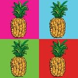 Abacaxi Fruta tropical exótica esboço Teste padrão foto de stock royalty free