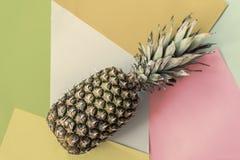 Abacaxi inteiro no fundo colorido pastel, vista superior Conceito mínimo do verão fotos de stock royalty free