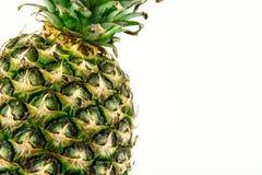 Abacaxi isolado no fundo branco Fruto do verão Foto de Stock Royalty Free