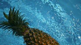 Abacaxi que flutua na água azul na piscina Alimento biológico cru saudável Fruta suculenta Fundo tropical exótico vídeos de arquivo