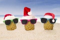Abacaxi três com o chapéu de Santa na praia Imagem de Stock