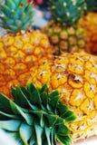 Abacaxis Fotos de Stock