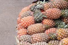Abacaxis Fotos de Stock Royalty Free