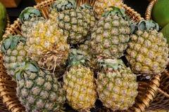 abacaxis Fotografia de Stock