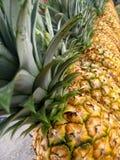 Abacaxis alinhados! fotografia de stock