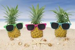 Abacaxis com os óculos de sol na praia Imagem de Stock Royalty Free