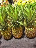Abacaxis frescos para a venda Imagem de Stock