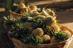 Abacaxis na venda Imagem de Stock