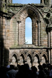 Abadía arruinada Fotos de archivo