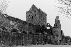 Abadía arruinada medieval Fotografía de archivo libre de regalías